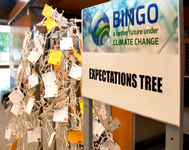BINGO expectations tree